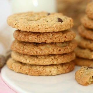 Thermomix Oat Biscuits