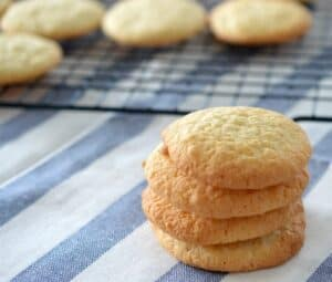 Thermomix Coconut Biscuits