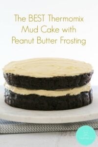 A layered chocolate mud cake with peanut butter frosting between the layers and spread over the top.