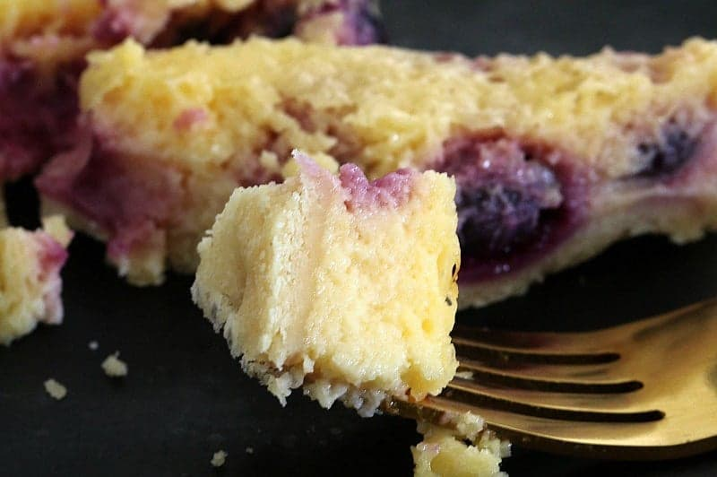 Thermomix Blueberry & Lemon Tart