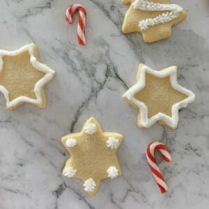 Thermomix Sugar Cookies decorated with sugar icing